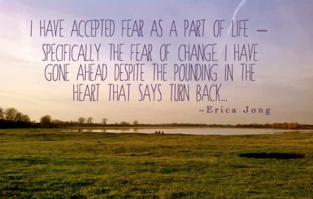 I have accepted fear as a part of life quote Sophie Caldecott something for a rainy day blog