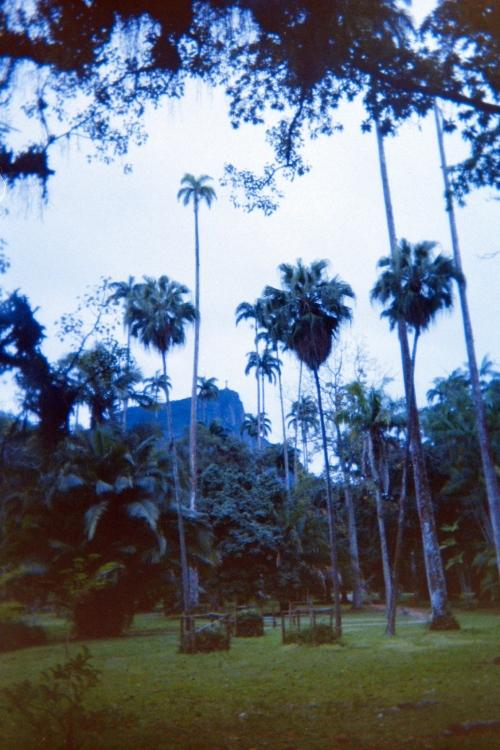 Rio de Janeiro, Brazil, botanic gardens, Christo Redemptor, Christ the Redeemer statue