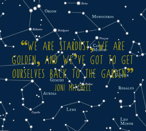 we are stardust, we are golden, and we've got to get ourselves back to the garden, Joni Mitchell Woodstock lyrics, inspirational quotes, A Better Place, ethical lifestyle